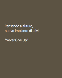 "Pensando al futuro, nuovo impianto di ulivi. ""Never Give Up"""